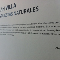 Alan Villa. Respuestas Naturales.