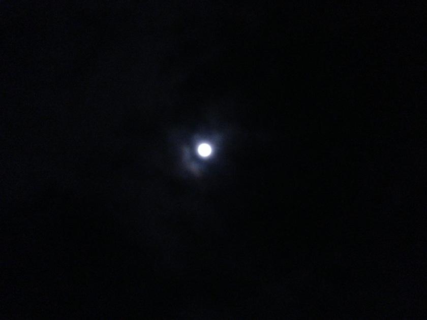 20130124-223959.jpg